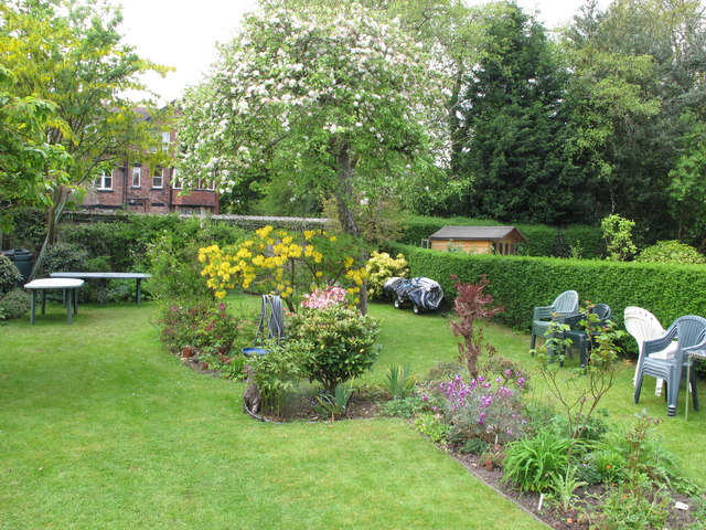 Didsbury back garden with blossom and flowers