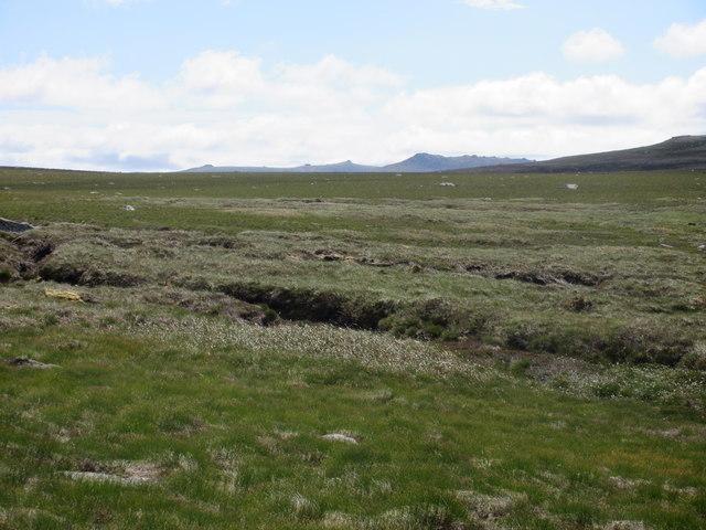 Cairngorm moorland