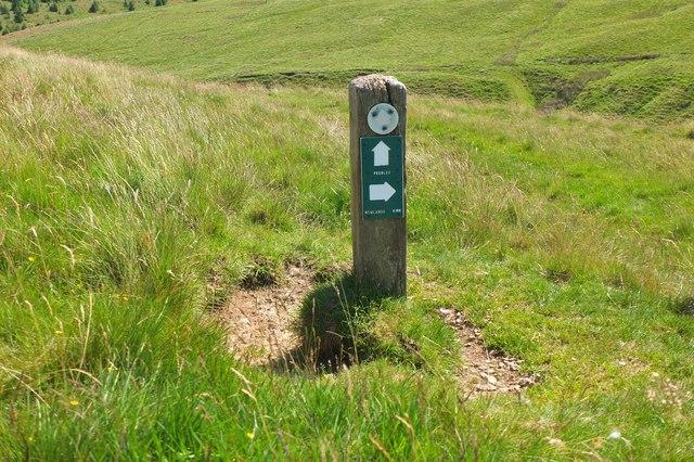 Signpost for path junction, Flemington Burn