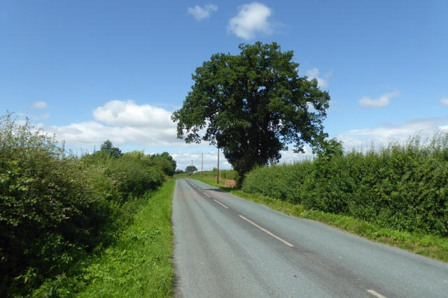 Between Thorganby and Skipwith