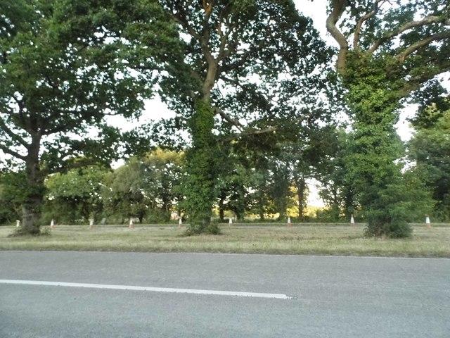 Romsey Road