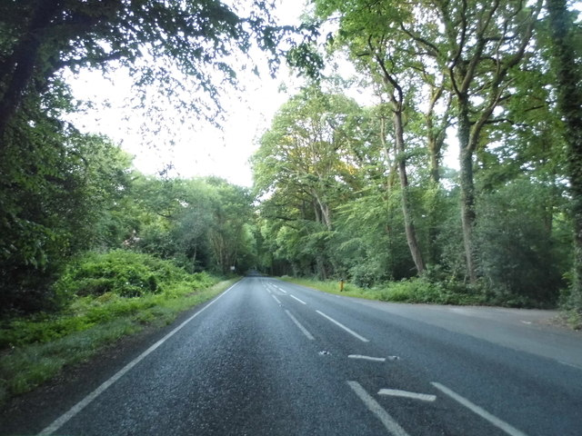 The Straight Mile, Crampmoor