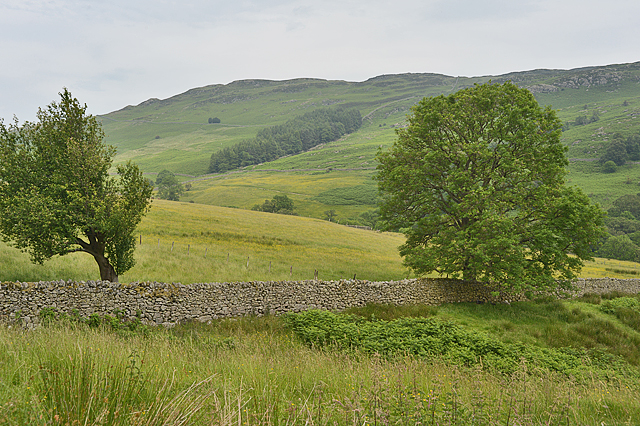 Looking across the valley of the Aira Beck