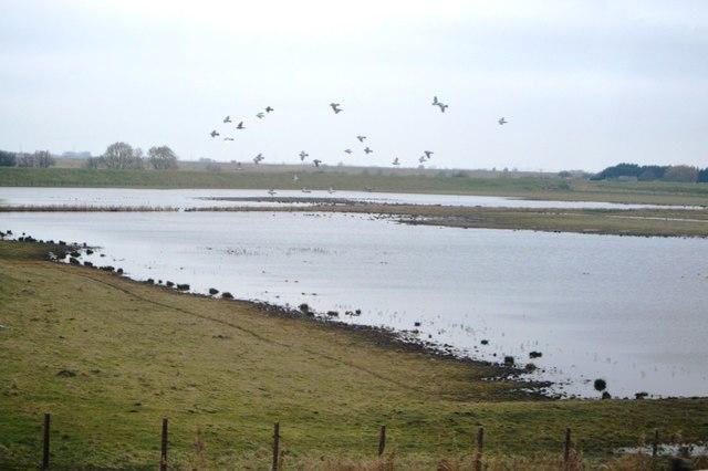 Localised flooding, Silt Fen