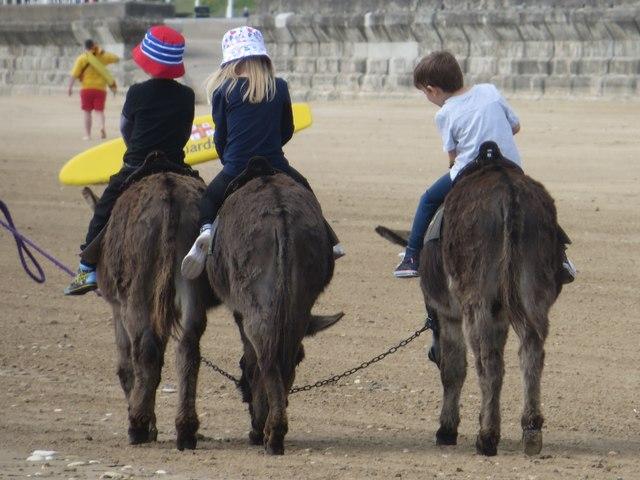 Donkey rides, South Sands, Bridlington