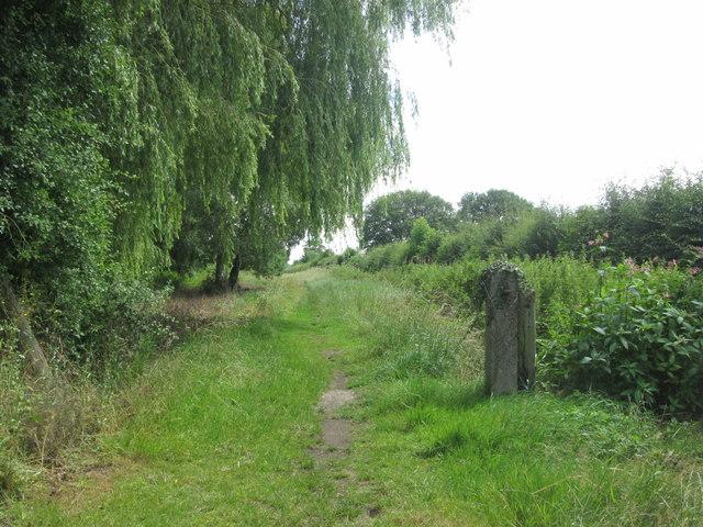 Leeds Lane, Appleton Roebuck