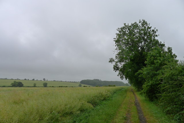 New bridleway (E65a) to Stonesby Spinney