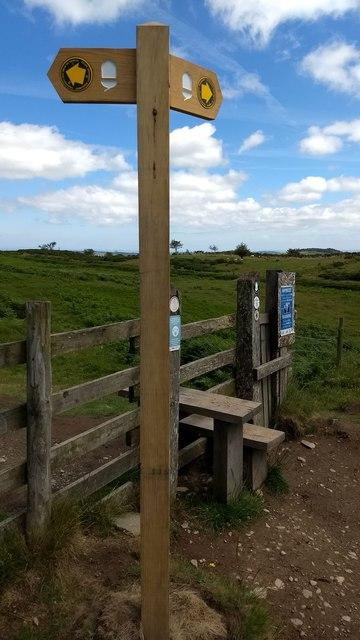 LDP signpost