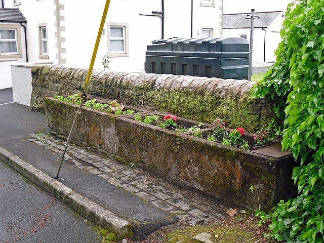 Old stone troughs planted with flowers