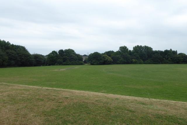 Across Netham Park