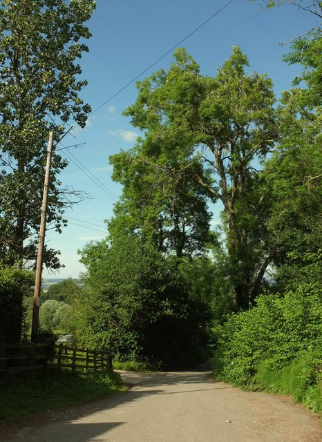 Top of Hill Lane