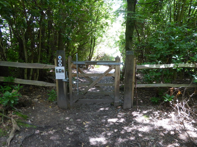 London Countryway in Kent (213)