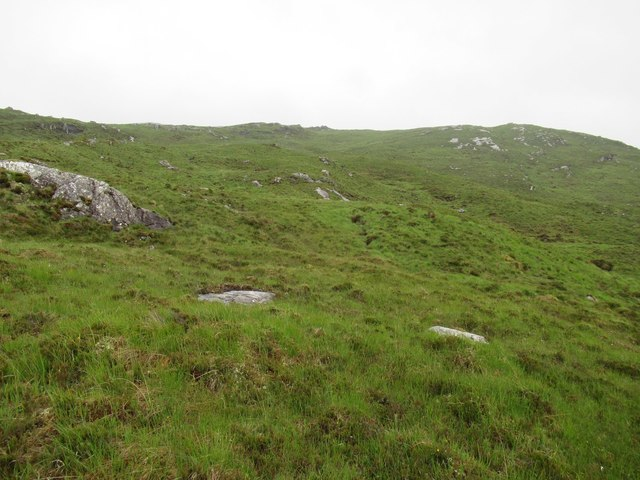 Hillside above Glen Golly River near Ben Hope