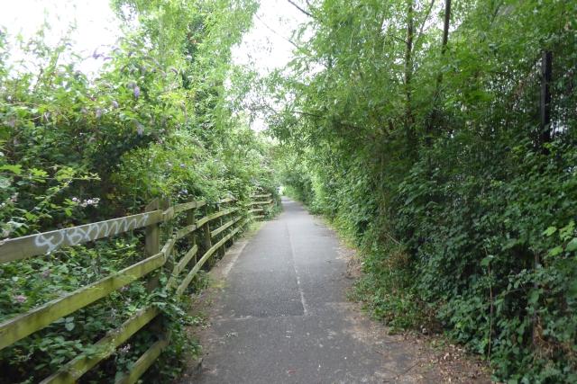Avon Trail
