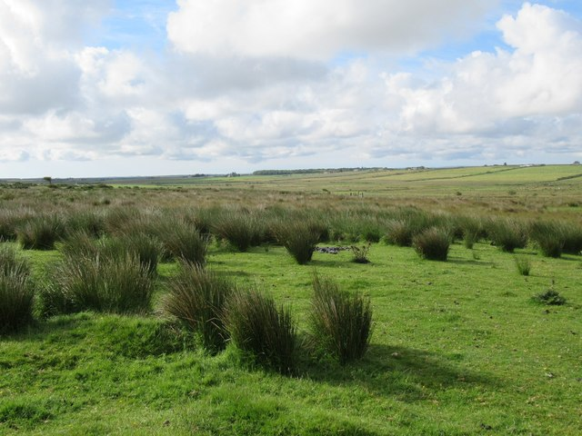 View towards Reamster Burn near Wick