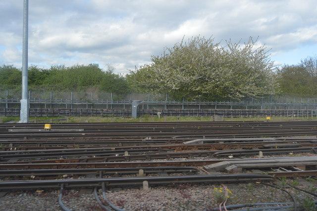 Lines in Neasden