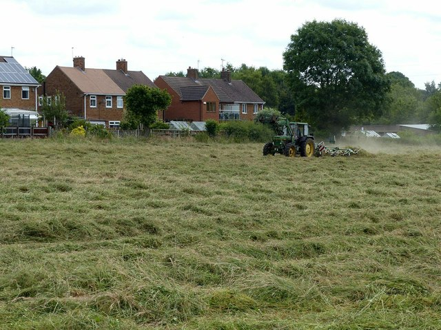 Making hay near Stanley Common