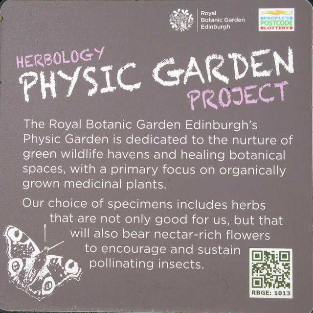 Herbology Physic Garden Project
