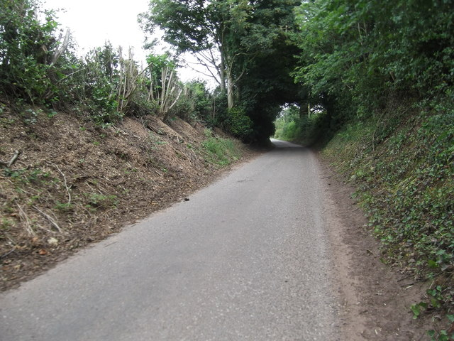 The road to Doley