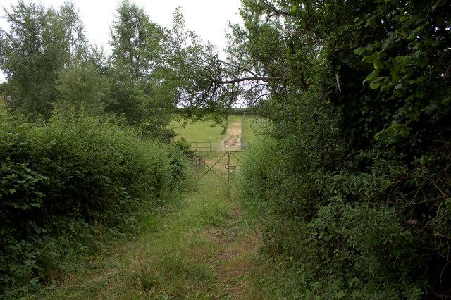 Gate near Woodlands farm