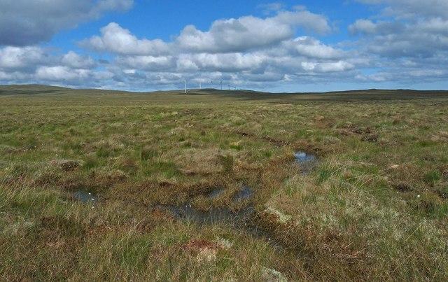 Bog near the Allt Loch nan Geadh, Isle of Lewis