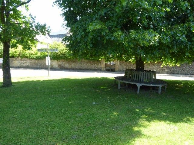 Seat under at tree