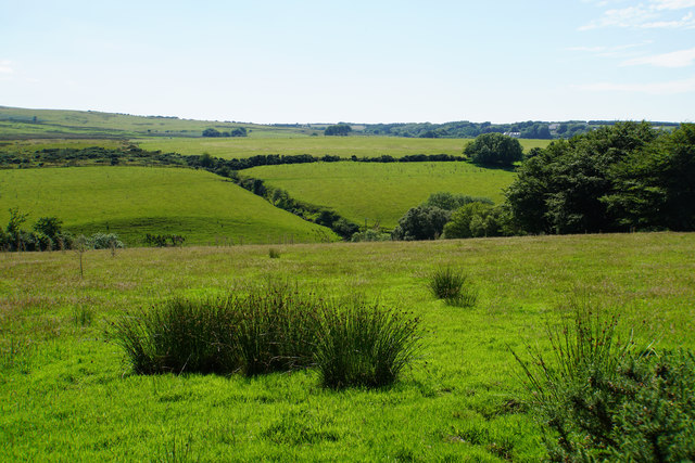 Fields above Thornworthy Water