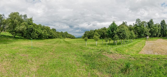 Delliefure Natural Burial Ground