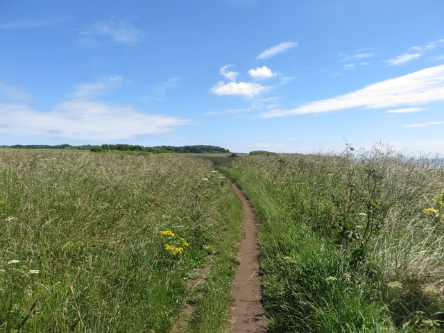 Cliff top path east of Sewerby