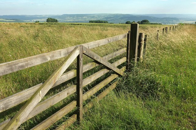 Gate and fence on Bredon Hill