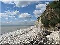 TA2169 : Stony beach at Dykes End : Week 27