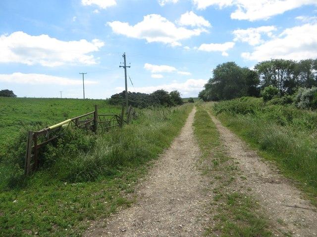 Farm track, Beacon Farm, Flamborough