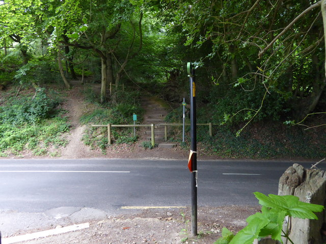 London Countryway in Kent (220)