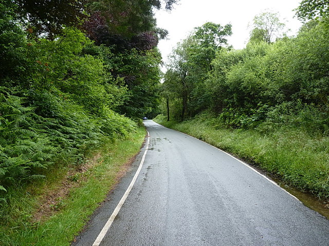 On the road around Vyrnwy