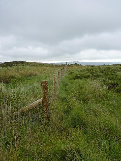 Modern fence on Creigiau'r Llyn