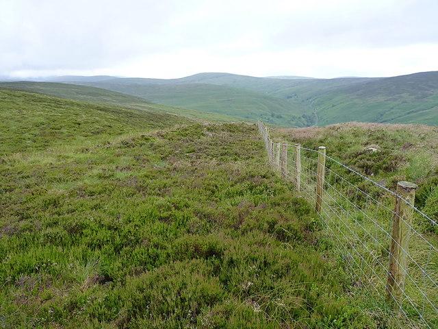 Fenceline above Fridd Fawr