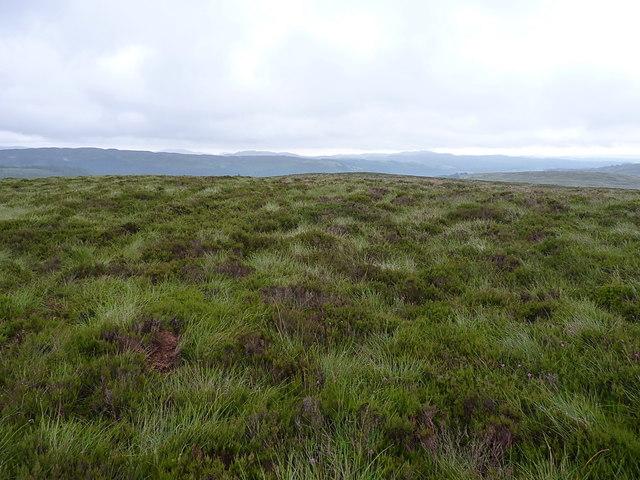 Summit area of Bryn Mawr