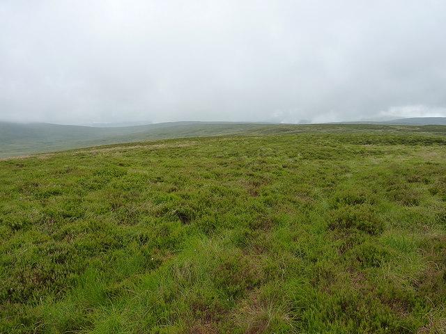 Along the 'ridge' of Bryn Mawr