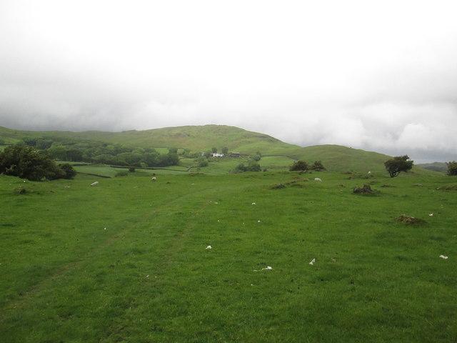 The  Cumbria  Way  on  Subberthwaite  Bank