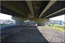 SX5156 : Below the A38 by N Chadwick