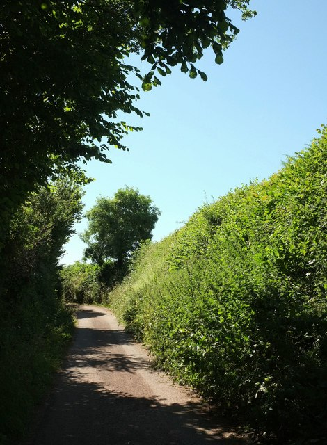 Lane to Fleet Mill