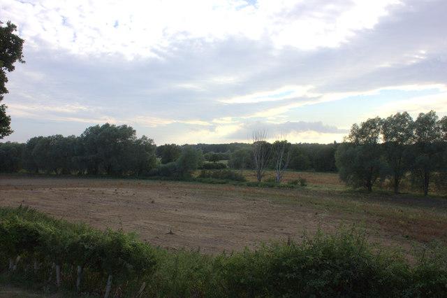 View across fields from St Mary's churchyard, Farnham
