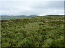 SH9322 : Moorland above the Eunant Fach by Richard Law