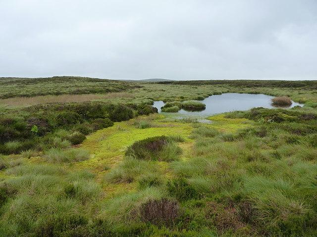 Unnamed lakes on the ridge