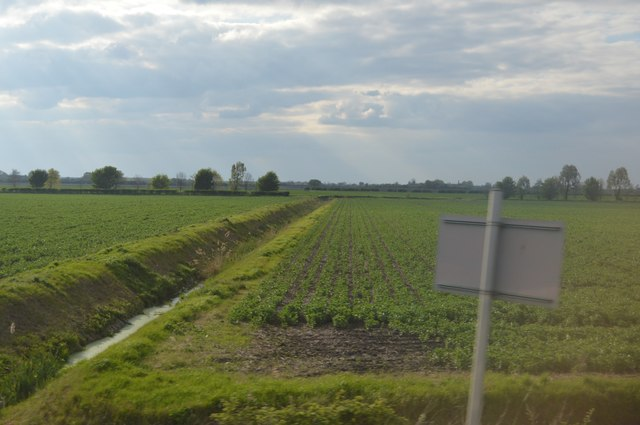 Ditch, North Fen