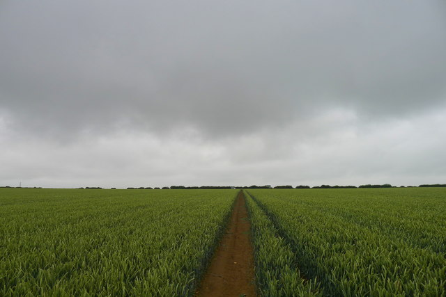The Mowbray Way north from Stonesby