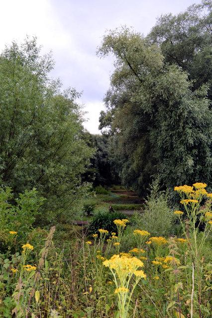 Broadway gravel pit nature reserve