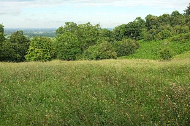 Bridleway down Bredon Hill