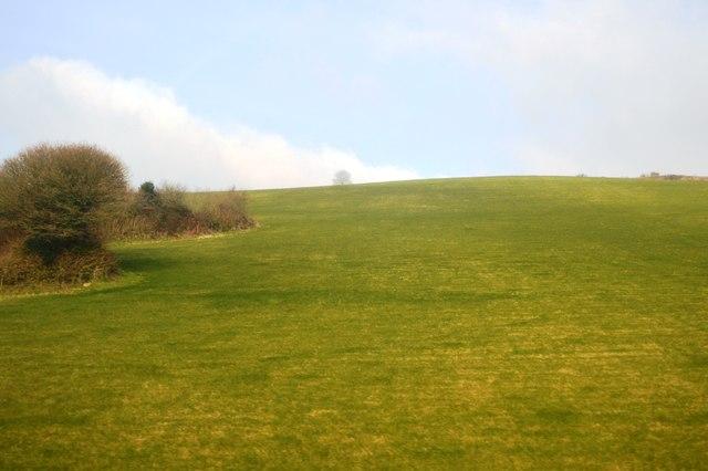 Devon Hillside