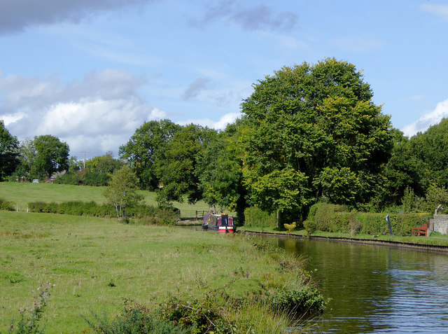 Canalside pasture north of Preesgweene, Shropshire